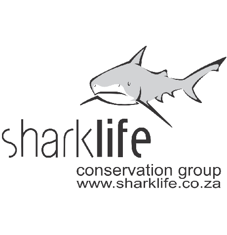 sharklife logo