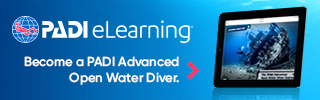 eLearning AOW divers 320x100