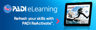 eLearning ReActivate divers bnrs320x100
