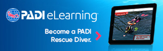 eLearning Rescue divers bnrs320x100